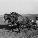USDA 1930s