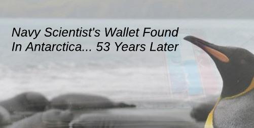 Wallet returned from Antarctica
